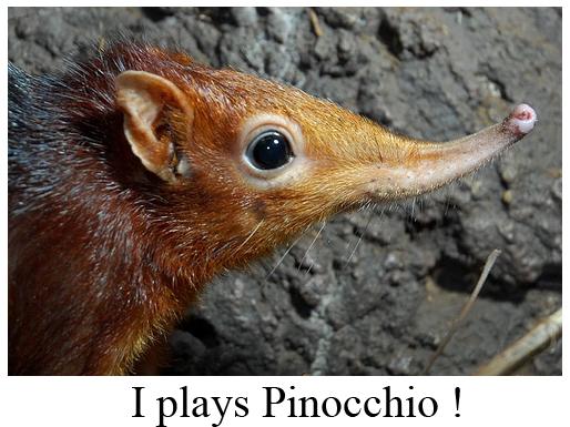 Pinocchio Animal