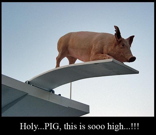 High Pig