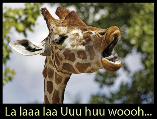 Talented Giraffe