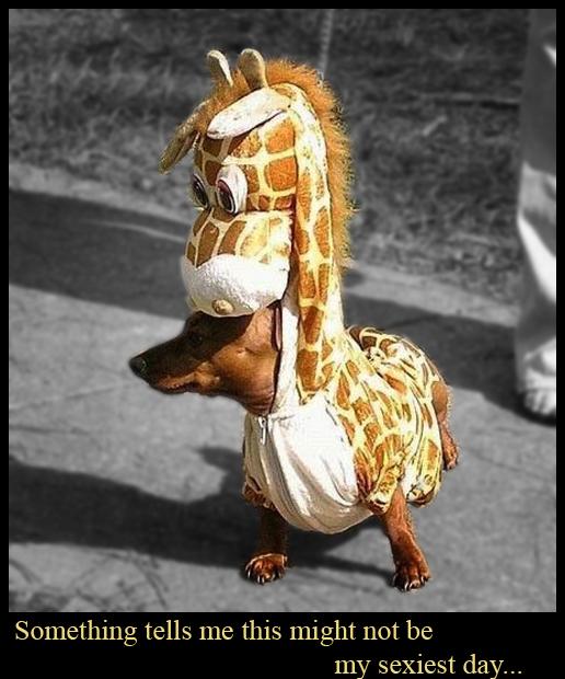 Sexy Giraffe Doggy