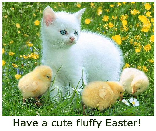 Cute Easter Animals Picture