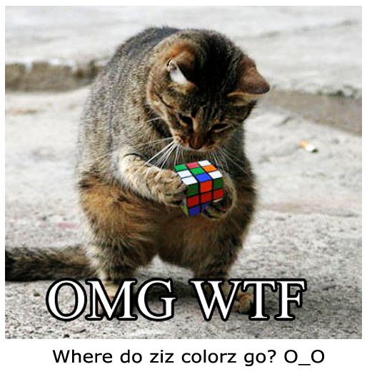 The Cat and the Rubik Cube