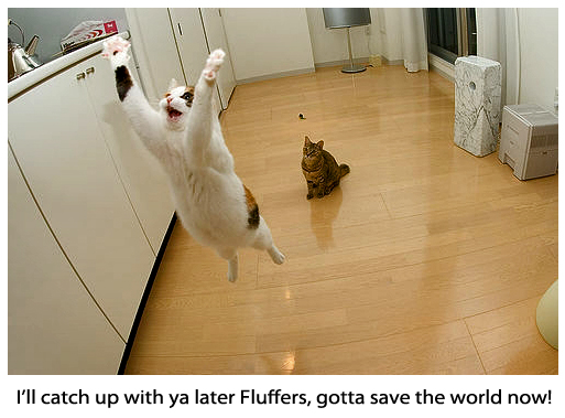 Supercat Going to Save the World - Funny Picture