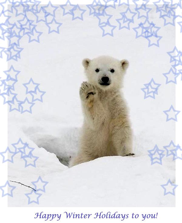 Happy Holidays Card [rainbow polar bear cub picture ...