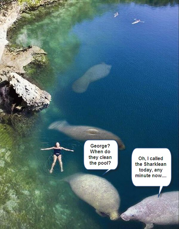 Floating Human is in Trouble [amazing photo]