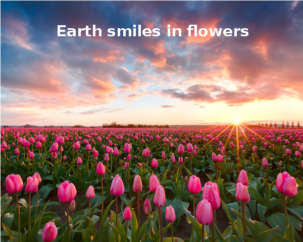 Earth Smiles in Flowers [inspiring photo]