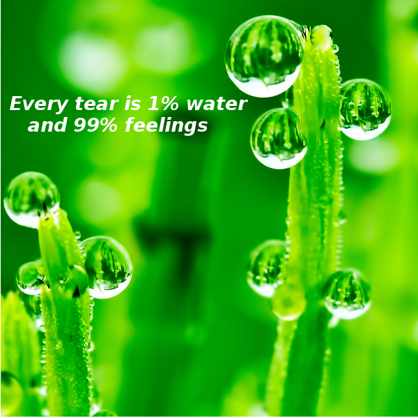 Every Tear...[touching photo]