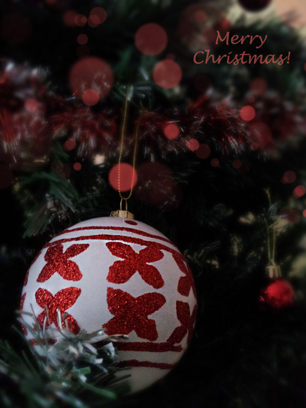 Christmas Cards [decoration photos]