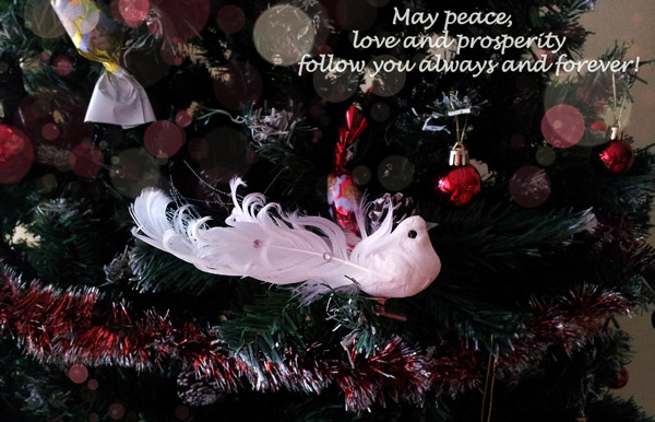 Christmas Cards [decoration photos]3
