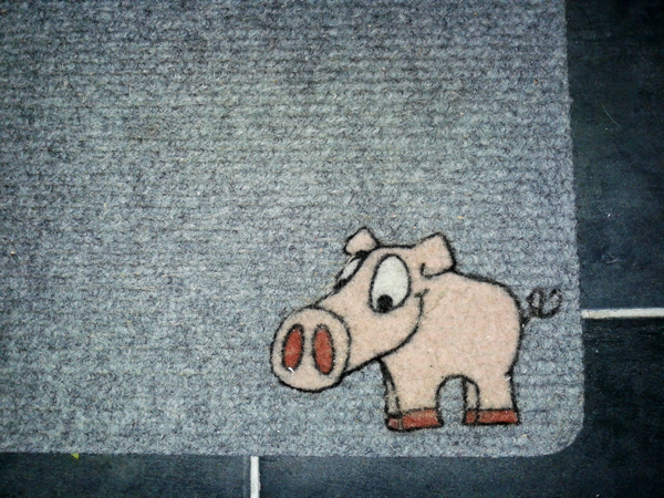 Little Piggy Carpet [cute photo]
