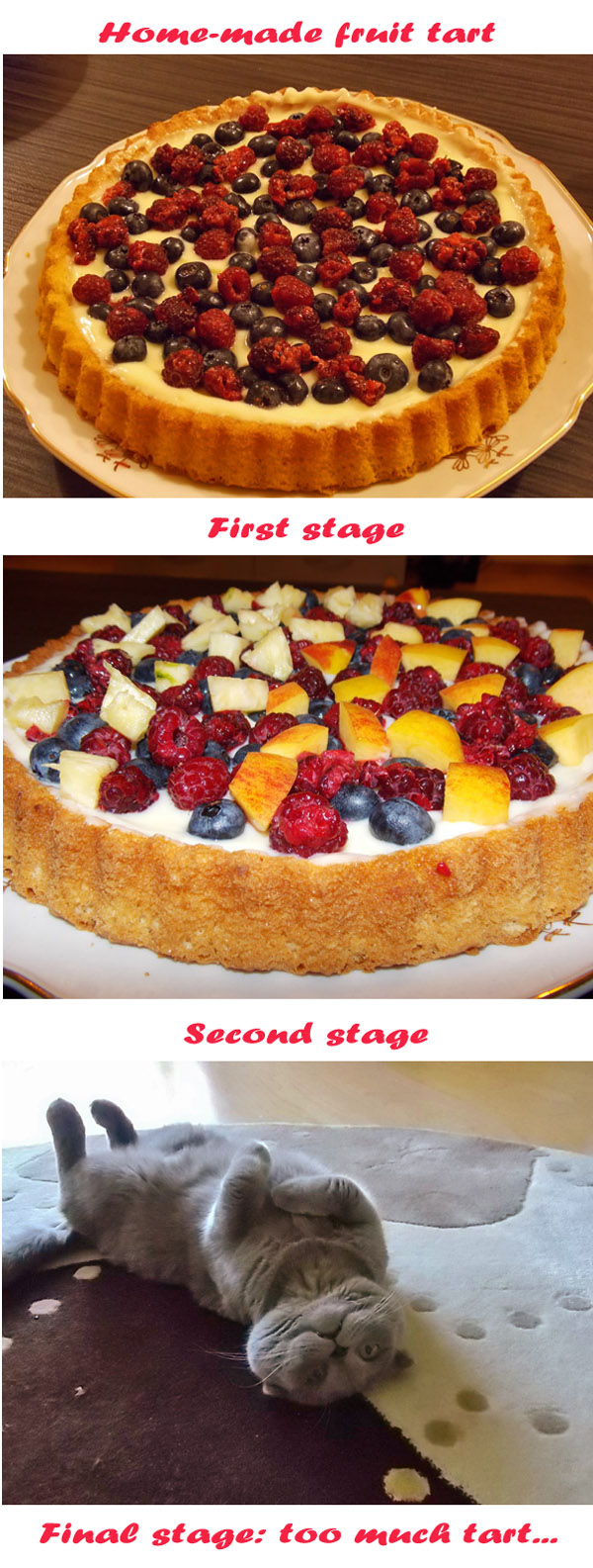 Charlie loves the home-made tart [photo collage]