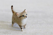 Cutest Tiny Animal Toys [photos]