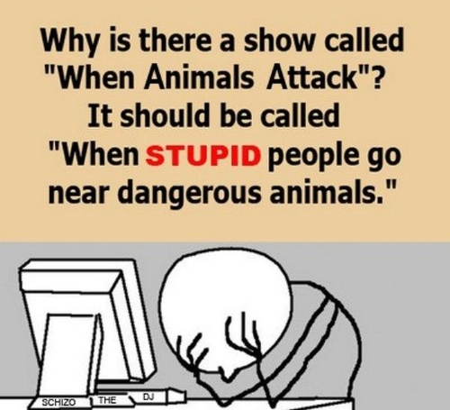 For the Animal Freaked Out People [sarcastic humor]