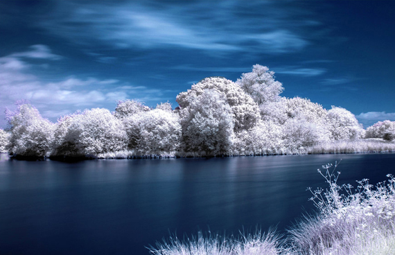 HDR Infrared Shot